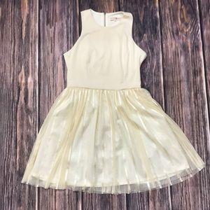 Altar'd State Cream Full Skirt Dress, L